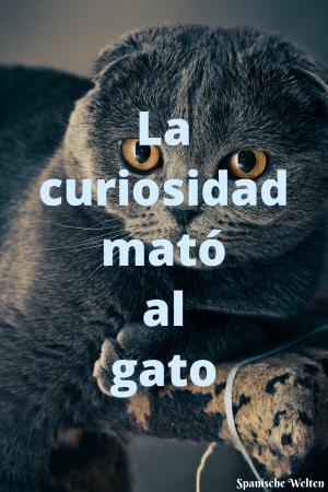 La curiosidad mato al gato