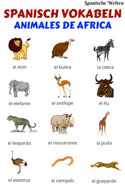 Spanisch Vokabeln Tiere in Afrika