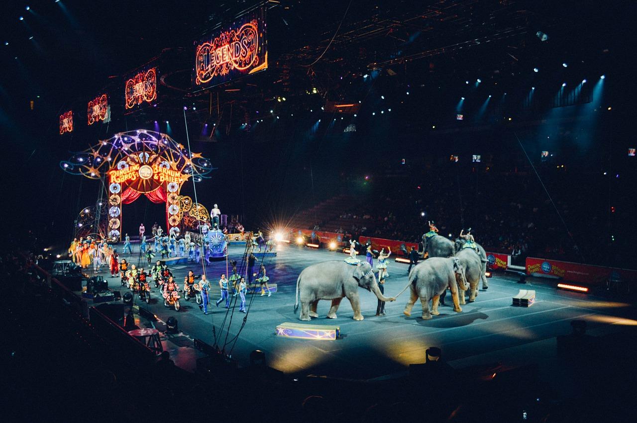 Spanisch Vokabeln: Zirkus