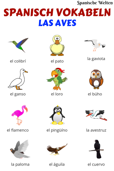 Vögel Spanisch