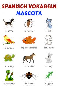 Vokabeln Haustiere