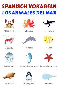 Spanisch Vokabeln Meerestiere