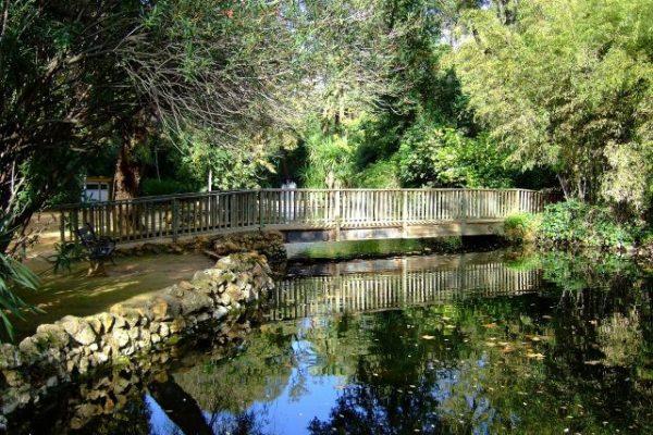 Maria Luisa Park 2